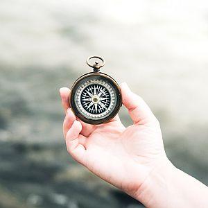 purpose & vision
